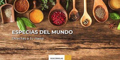 Portada de la web de Grupo Ysaroz - Rocibel